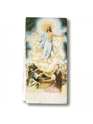 Copriambone 9257 - Resurrezione