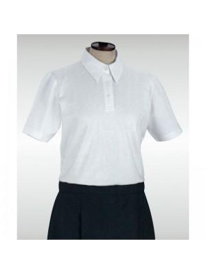 Camiseta Polo 10055